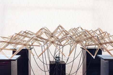 tum-ausstellung-structures-2270
